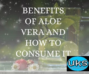 benefits-of-aloe-vera-and-how-to-consume-it